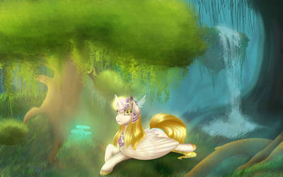 Pone in the forest