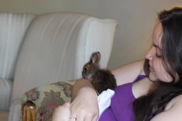 .: Bunbun and Me :.