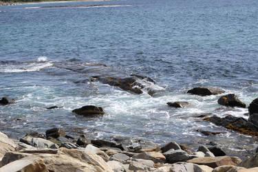 .: The Rocks of Tor Bay :.