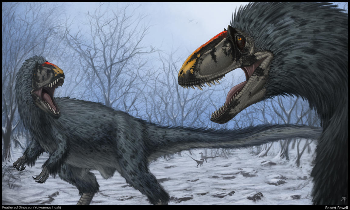 Awesome Paleoart  Yutyrannus_huali_by_rpowell77-d4x5htk