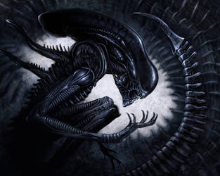 Xenomorph by rob-powell