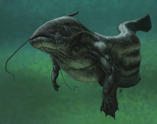 Wels Catfish Mermaid by rob-powell