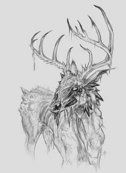 Infected Deer
