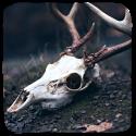 skullz f2u by worthless-parasite