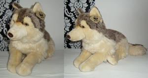 WWF Wolf