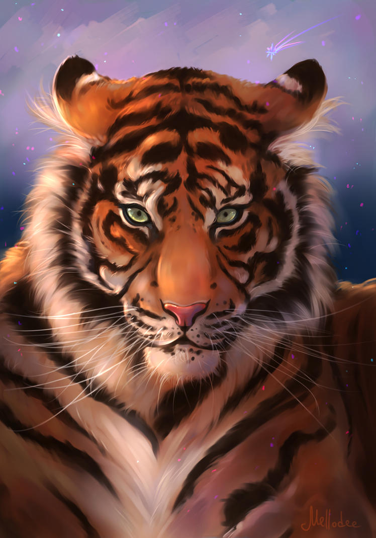 Tiger Portrait by Mellodee