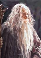 Gandalf by PelechiAM