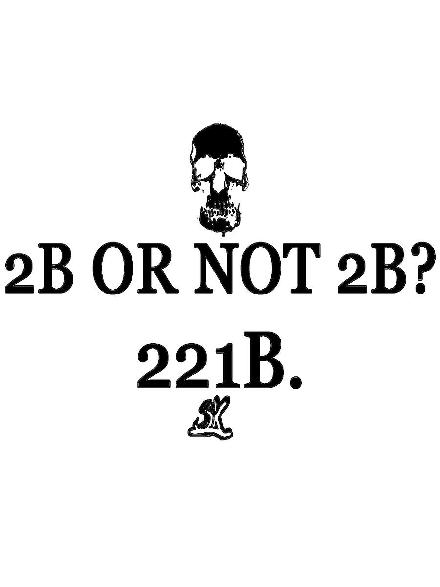 2B or not 2B? 221B. by whodyathink