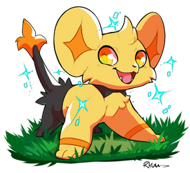 A wild Shinx appears!