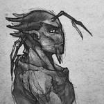 Zhaikes scribble