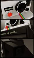 Polaroid Details