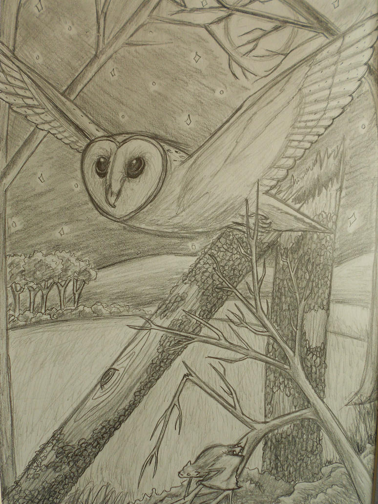 https://pre00.deviantart.net/1d8a/th/pre/i/2012/170/1/1/barn_owl_and_bat___art_homework_by_josabella-d54354f.jpg