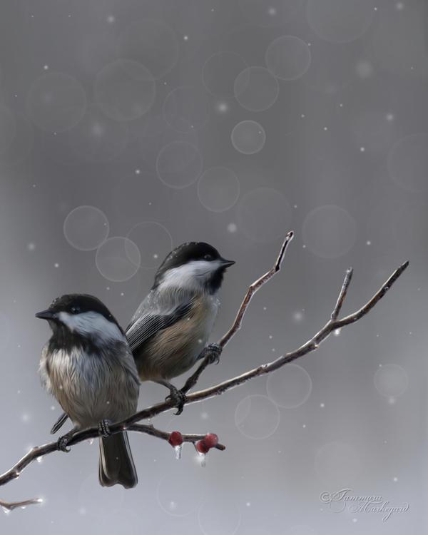 The Holiday Serenade by Tammara