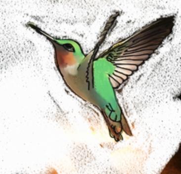 Tattoo ideas by emma freeman for Hummingbird hip tattoo