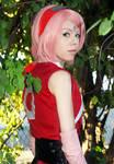 Sakura Haruno (The Last: Naruto the Movie)