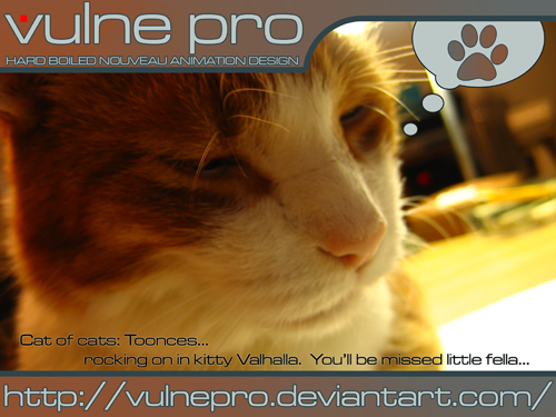 Toonces I.D. by VulnePro