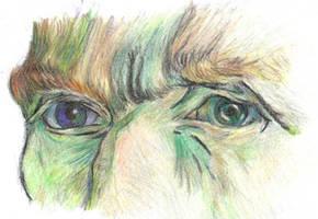 van gogh's eyes