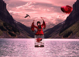 Catch and Release by GeminIImages