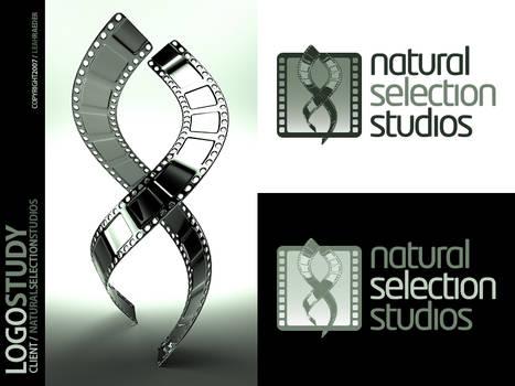 Logo Study: NSS