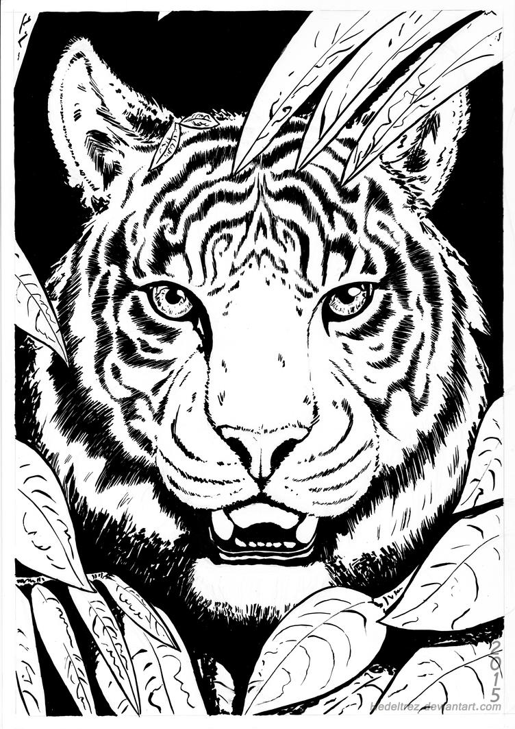 INK Tiger by Hedeltrez