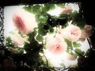 Mignonne, allons voir si la rose by Melindiaden