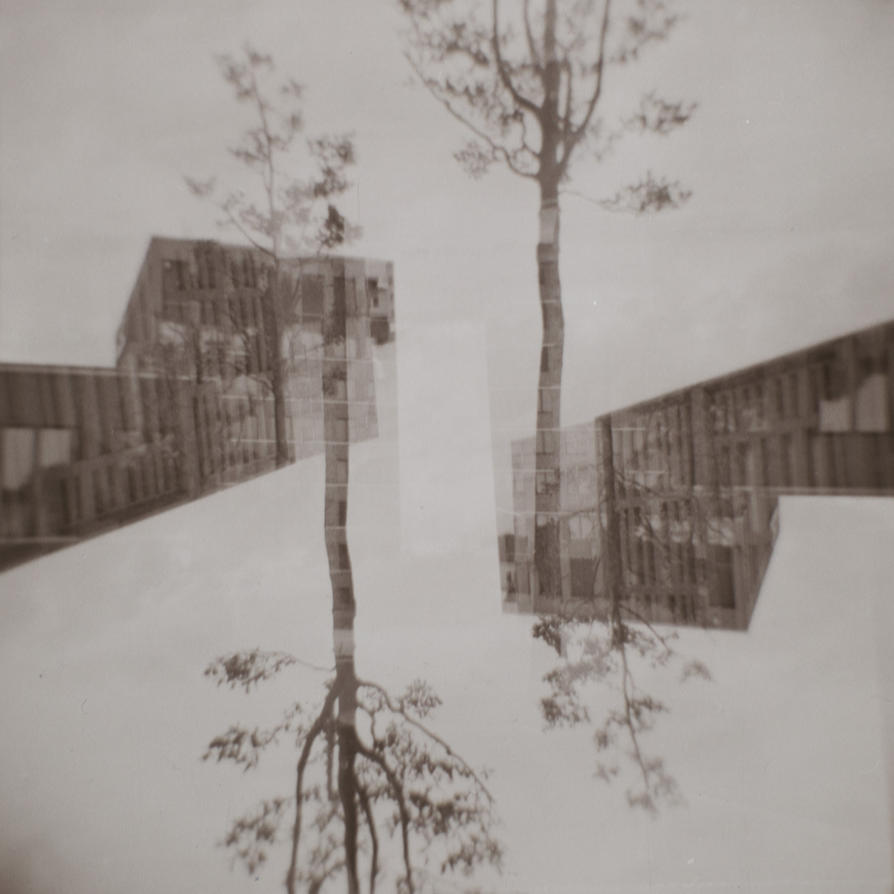 double Exposure 03 by rawimage