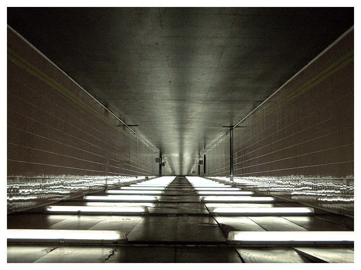Fluorescent Tube By Rawimage