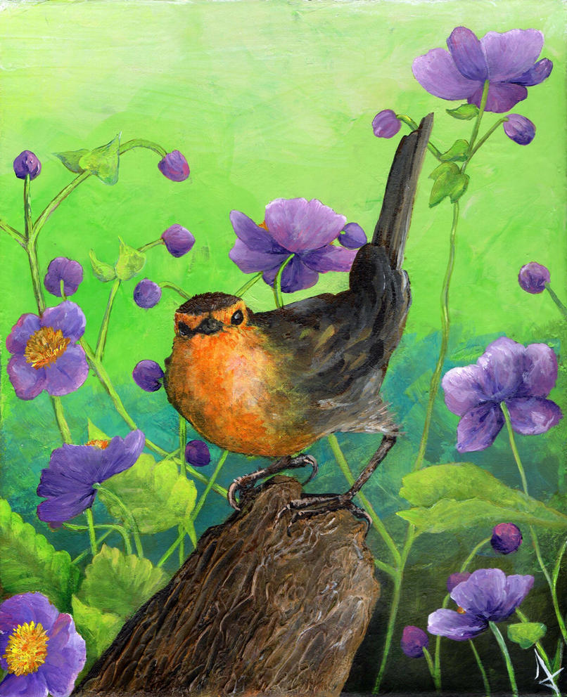 Robin by llewllaw