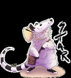 she possum