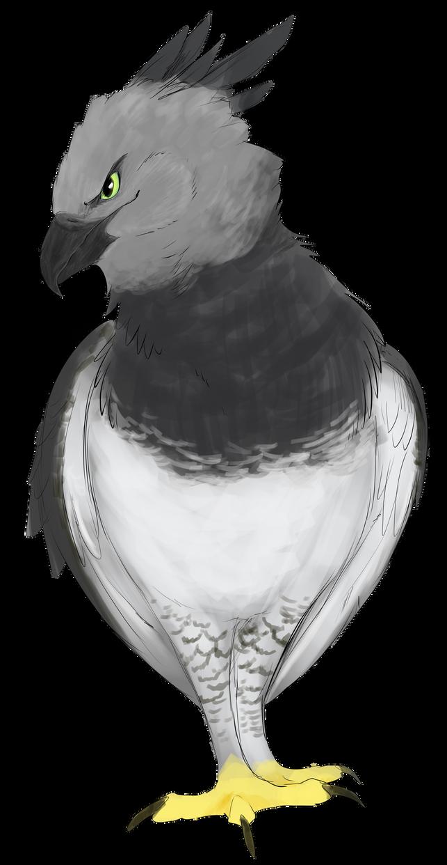 Harpy by Heichukar