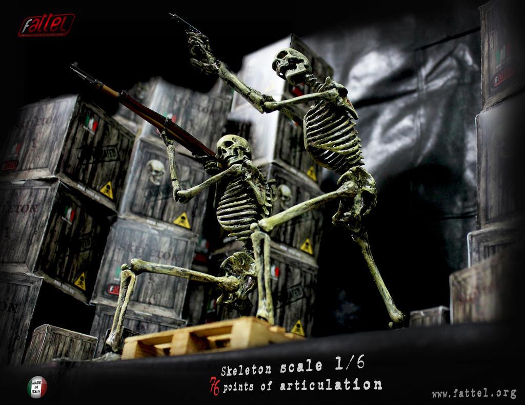 skeleton in scale 1/6  color bone by sdefano