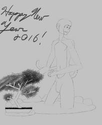 Happy New Year 2016 by greensam