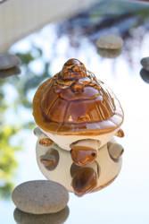 Turtle by Charlene-Art