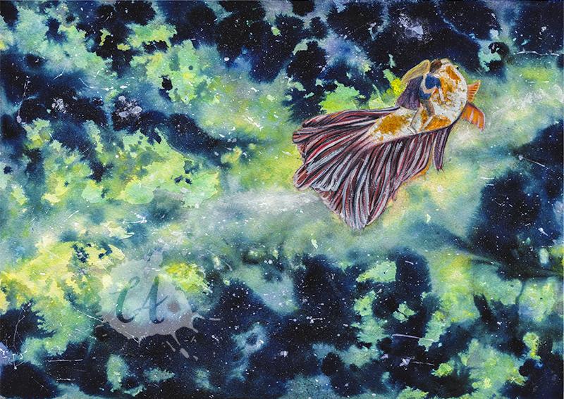 Starfish by Charlene-Art