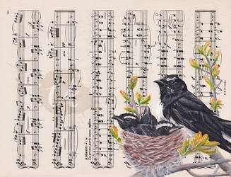 Willie Wagtails by Charlene-Art