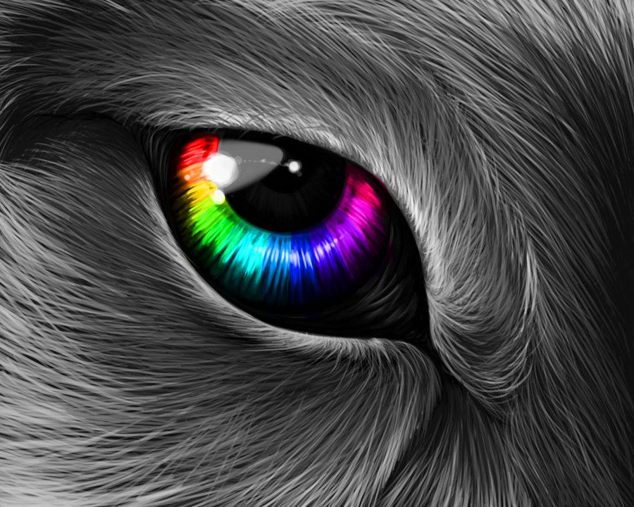 Colorful Wolf Eye by NyanKittyCat on DeviantArt