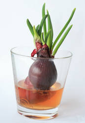 onion in a glass