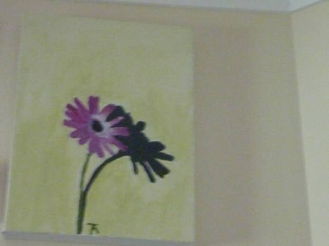 flower with a shadow
