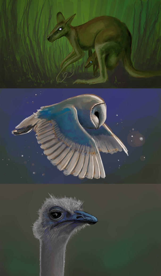 Kangaroo, Owl, Ostrich by kalliikak