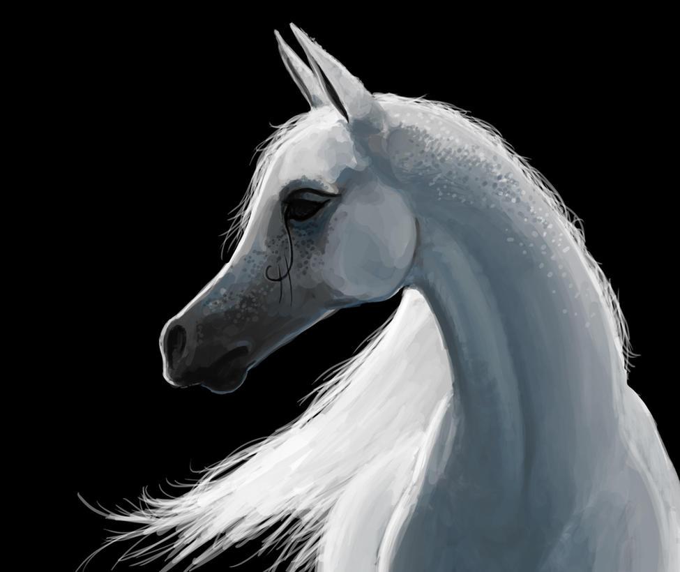 White Horse by kalliikak