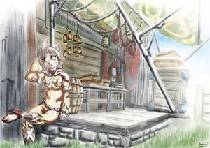 A cat on a quiet day in Torigoth