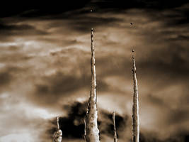 Evaporation by plutonicfluf