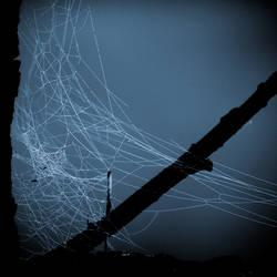 webs.3