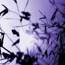 dreams in purple by plutonicfluf