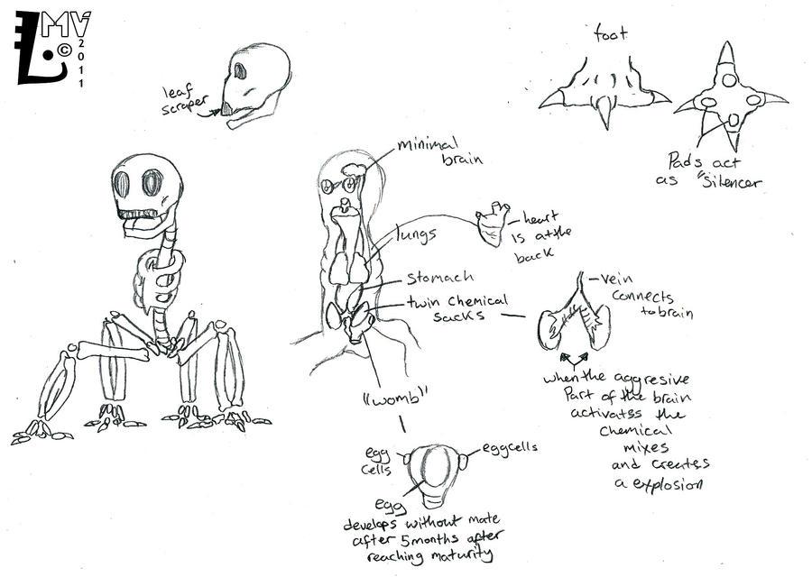 Creeper anatomy -for fun- by SpontaneousFork on DeviantArt