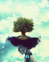 Dreams by ZeyToX