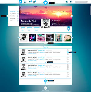 Concepto web Twitter