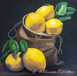 Bag of lemons
