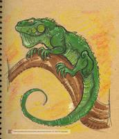Iguana by marimoreno