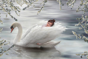Swan Girl 4 by Tracy59